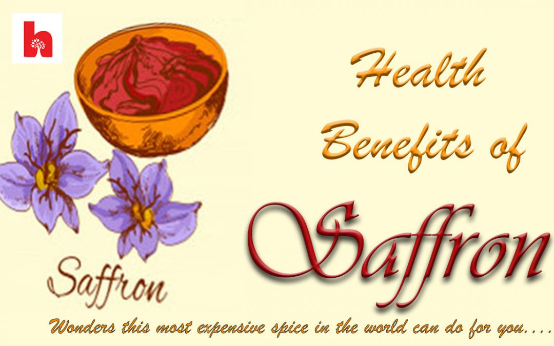 Saffron flower and saffron spice showing health benefits of saffron